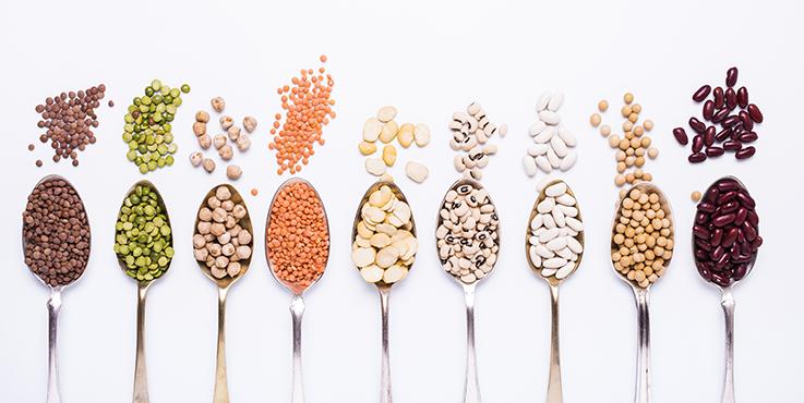 Légumineuses et haricots sur cuillères