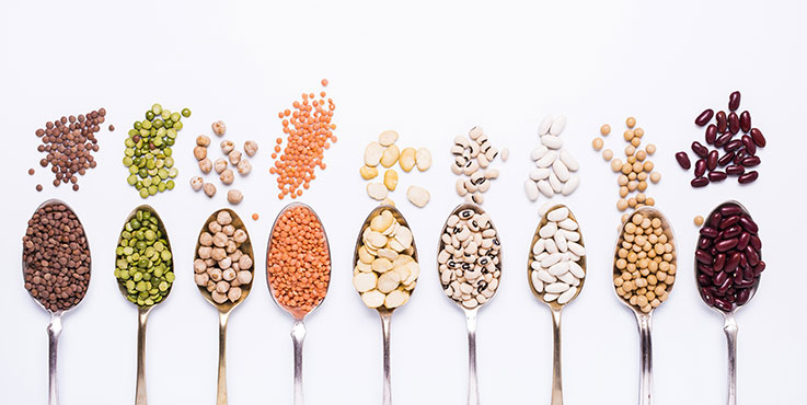 different legumes on spoons