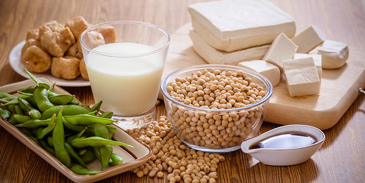 Types de produits à base de soja, y compris le tofu, le lait de soja, les haricots edamame
