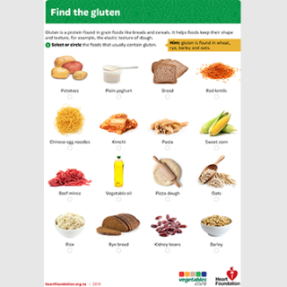 Find the gluten activity sheet