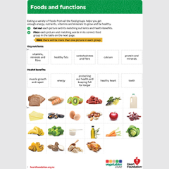 Food functions teaching activity