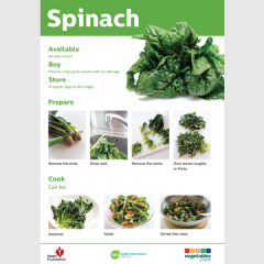 Spinich skill card recipe teaching resource