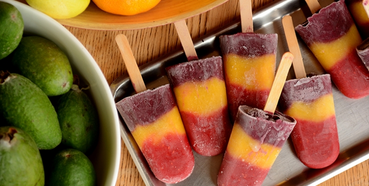 Fruit ice block recipe