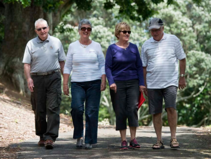 A group of retired people walk on a woodland trail.
