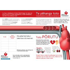 Learn about blood pressure and your heart in Te Reo Māori
