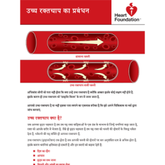 Blood pressure (Hindi) - pamphlet