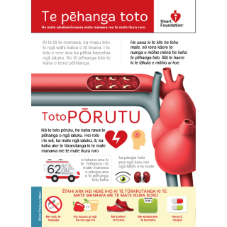 Blood pressure and what you can do about it in a Te Reo Māori poster