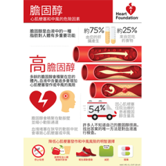 Cholesterol (Chinese) - A4 poster