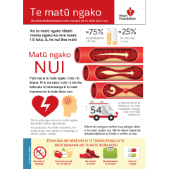 Cholesterol explained in a Te Reo Māori poster