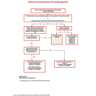 A guide for household sore throat management - algorithm